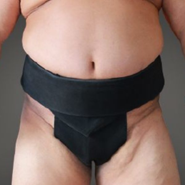 mawashi, sumo belt