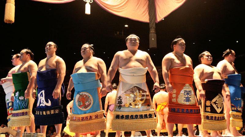 Professional Sumo