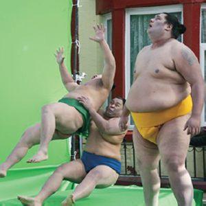 sumo models
