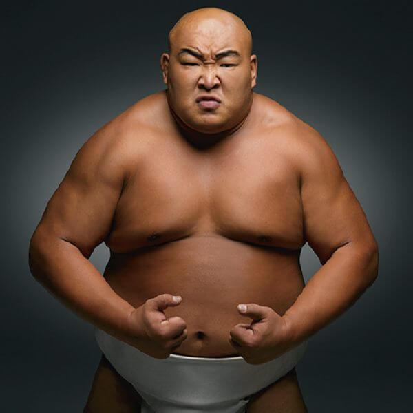 sumo model