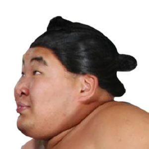 sumo wig