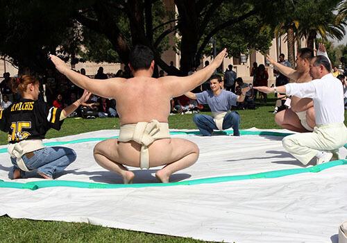 csun sumo demo