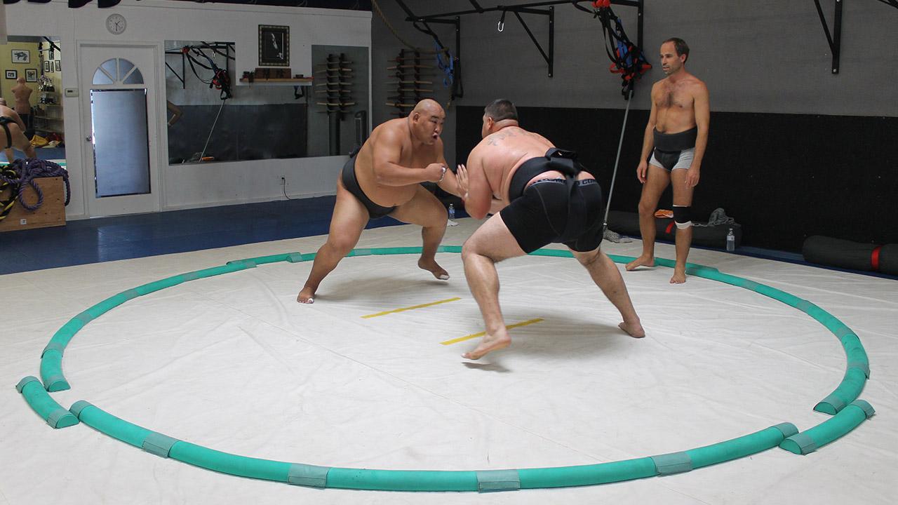 sumo rules