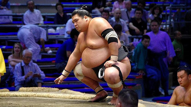 Japanese Pro Sumo