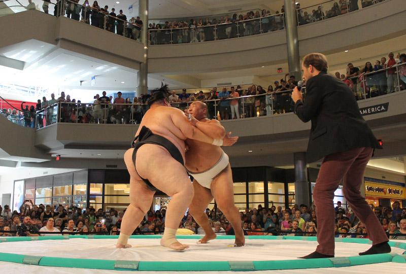 sumo specialty show